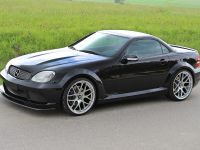 LUMMA Tuning Mercedes-Benz SLK R170, 3 of 12