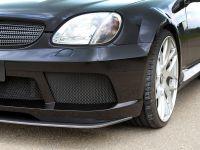 LUMMA Tuning Mercedes-Benz SLK R170, 5 of 12