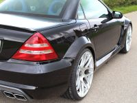 LUMMA Tuning Mercedes-Benz SLK R170, 9 of 12