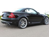 LUMMA Tuning Mercedes-Benz SLK R170, 10 of 12