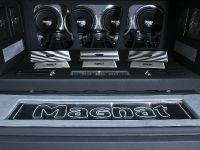 Magnat Ford F150 show car