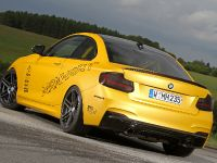 Manhart BMW M235i Coupe MH2 Clubsport, 5 of 14