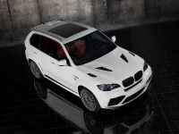 Mansory BMW X5 E70, 8 of 15