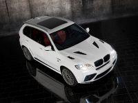 Mansory BMW X5 E70, 9 of 15