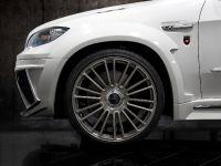 Mansory BMW X5 E70, 11 of 15