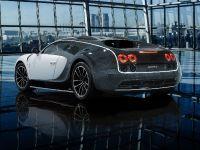 Mansory Bugatti Veyron Vivere, 2 of 7