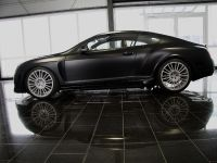 Mansory GT Speed, 9 of 10