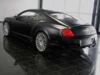 Mansory GT Speed, 8 of 10