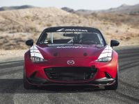 Mazda Global MX-5 Cup Racecar, 1 of 25