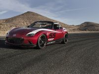 Mazda Global MX-5 Cup Racecar, 5 of 25