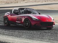 Mazda Global MX-5 Cup Racecar, 6 of 25