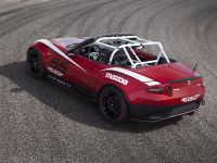 Mazda Global MX-5 Cup Racecar, 13 of 25
