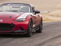 Mazda Global MX-5 Cup Racecar, 20 of 25