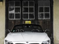 MB Individual Cars BMW Z4 Carbon-Paket, 3 of 22
