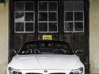 MB Individual Cars BMW Z4 Carbon-Paket, 3 of 22