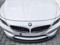 MB Individual Cars BMW Z4 Carbon-Paket, 8 of 22