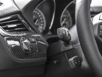 MB Individual Cars BMW Z4 Carbon-Paket, 20 of 22