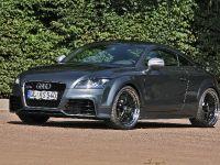 thumbnail image of mcchip-dkr Audi TT RS