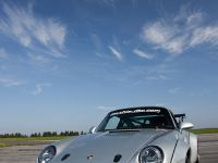 Mcchip-DKR Porsche 993 GT2 Turbo Widebody MC600 , 10 of 14