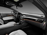 Mercedes-Benz CLS Shooting Brake, 13 of 69
