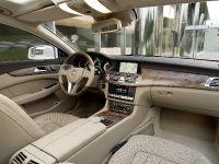 Mercedes-Benz CLS Shooting Brake, 22 of 69