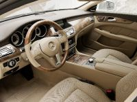 Mercedes-Benz CLS Shooting Brake, 29 of 69