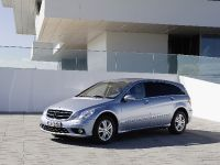Mercedes-Benz R 350 BlueTEC, 1 of 4