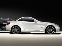 Mercedes-Benz SLK 2LOOK Edition, 3 of 10