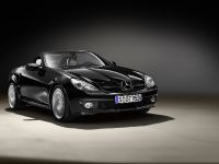 Mercedes-Benz SLK 2LOOK Edition, 4 of 10
