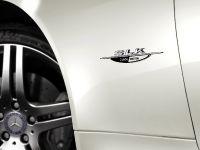 Mercedes-Benz SLK 2LOOK Edition, 7 of 10