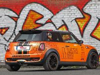 Mini Cooper S by Cam Shaft, 8 of 16