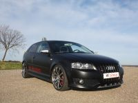 thumbnail image of MR Car Design Audi S3 Black Performance Edition