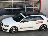 MTM Audi S3 8P, 3 of 3