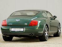 mtm Bentley Continental GT Birkin Edition, 4 of 6