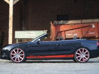 MTM Audi S5 Cabrio Michelle Edition, 7 of 12