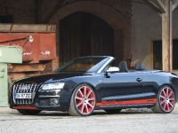 MTM Audi S5 Cabrio Michelle Edition, 9 of 12