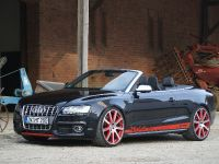 MTM Audi S5 Cabrio Michelle Edition, 10 of 12