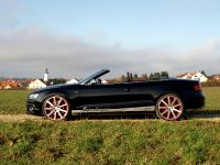 MTM Audi S5 Cabrio Supercharged, 8 of 12