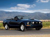 Mustang Convertible, 2 of 2