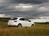 2009 Seat Ibiza SportCoupe, 13 of 14