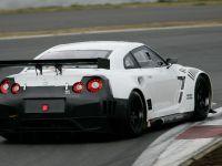 Nissan GT-R 2010 FIA GT1, 13 of 13