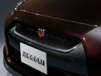 Nissan GT-R SpecV, 6 of 19