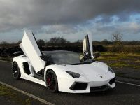 Oakley Design Lamborghini Aventador LP760-4 Dragon Edition, 4 of 31