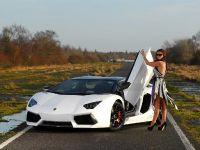 Oakley Design Lamborghini Aventador LP760-4 Dragon Edition, 5 of 31
