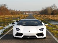 Oakley Design Lamborghini Aventador LP760-4 Dragon Edition, 7 of 31
