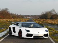 Oakley Design Lamborghini Aventador LP760-4 Dragon Edition, 8 of 31