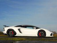 Oakley Design Lamborghini Aventador LP760-4 Dragon Edition, 15 of 31