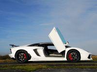 Oakley Design Lamborghini Aventador LP760-4 Dragon Edition, 16 of 31