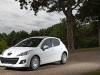 Peugeot 207 Economique, 10 of 10