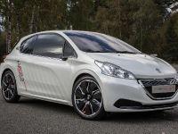Peugeot 208 HYbrid FE concept, 1 of 6